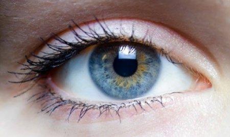 Изобретена нанопленка, которая способна заменить сетчатку глаза