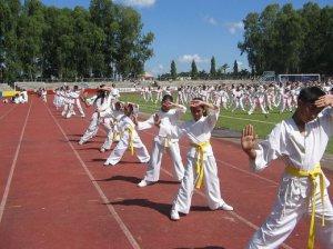 Преступнику не удалось ограбить учеников школы каратэ