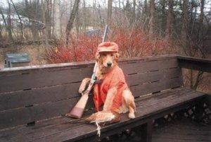 Собака случайно застрелила хозяина