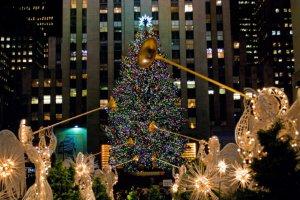 400$ за новогоднюю ёлку в Нью-Йорке
