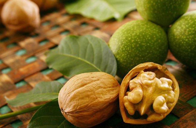 Новые свойства грецких орехов