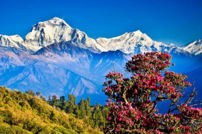 Непал - активный отдых для любителей туризма